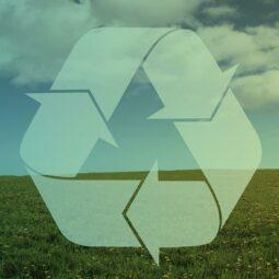 A reciclagem e a retomada econômica